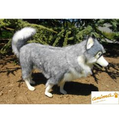 http://bambinweb.eu/2042-2504-thickbox/peluche-chien-husky-gris-70-cm.jpg