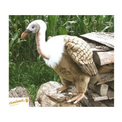 http://cadeaux-naissance-bebe.fr/2423-3085-thickbox/peluche-vautour-76-cm.jpg