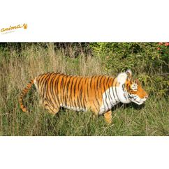 http://bambinweb.com/4368-6576-thickbox/peluche-tigre-brun-160-cm-l.jpg