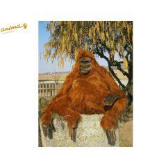 http://cadeaux-naissance-bebe.fr/4373-6581-thickbox/peluche-orang-outan-90-cm-h.jpg