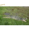 Peluche Crocodile géant 230 cm L