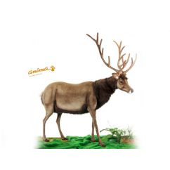 http://bambinweb.fr/4381-6589-thickbox/peluche-cerf-geant-200-cm-h.jpg