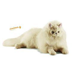 http://www.bambinweb.com/4646-9305-thickbox/peluche-chat-persan-ecru-couche-50-cm-l.jpg
