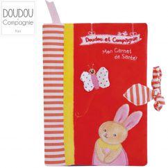 http://www.bambinweb.com/4994-17407-thickbox/protege-carnet-de-sante-lapin.jpg