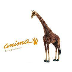 http://bambinweb.com/569-669-thickbox/peluche-girafe-165-cm.jpg